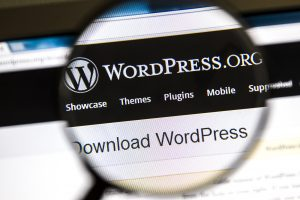 Close up of WordPress website under a magnifying glass.