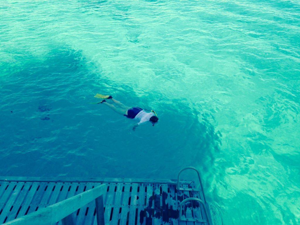 Snorkeling in 2015 in Bora Bora