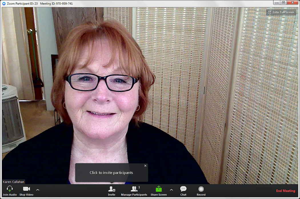 Karen Callahan presenting webinar