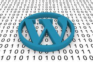 WP software upgrades